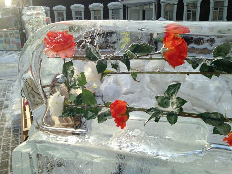 Ice Ice Sculpture Tomsk