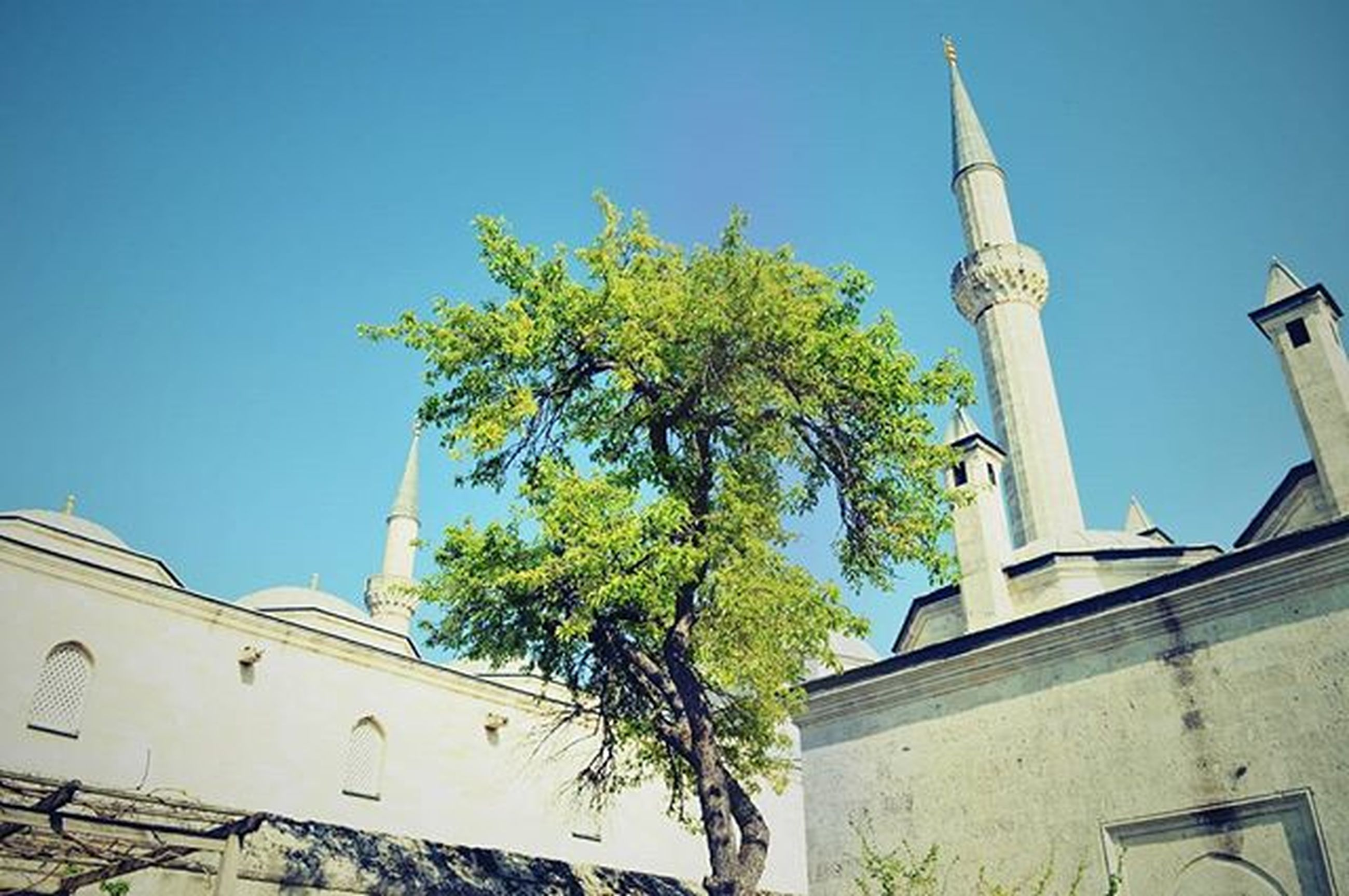 architecture, building exterior, built structure, clear sky, low angle view, blue, religion, church, place of worship, spirituality, tree, cross, copy space, sunlight, day, high section, no people, outdoors