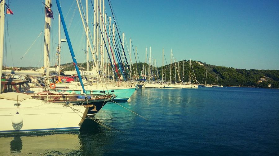 Harbor the