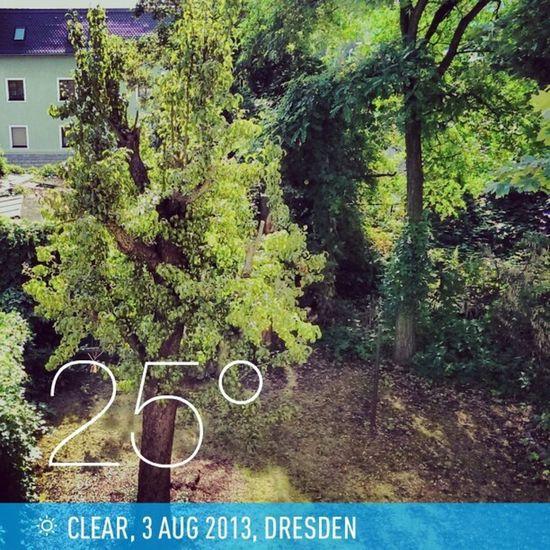 Good morning world, good morning Dresden. 10:30am and already 25°C. #weather #instaweather #instaweatherpro #Dresden #Germany Weather Germany Dresden Instaweather Instaweatherpro