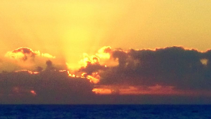 Beautiful Sunrise Sunrise ❤️  EyeEm Best Shots - Sunsets + Sunrise Sunrise And Clouds Beach Manly Beach Sunrise_Collection Sydney, Australia Life Is A Beach Sun Trying To Break Through The Clouds Sunrays ❤Bliss❤