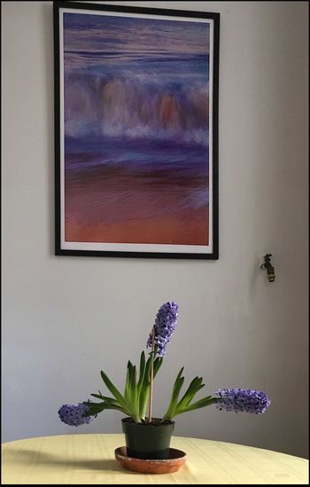 Hyacinth & my Photo enlargement - 5/2/17 EyeEm Best Shots Home Interior IPhone 6s Malephotographerofthemonth My Unique Style On My Wall Plant Print Of Ocean In Motion Series Stillife In My Apt.