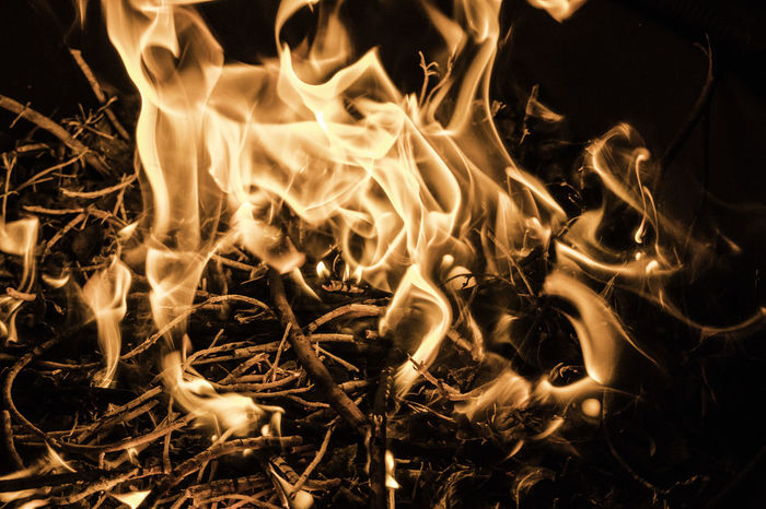 Close up shot of fire burning some twigs. Sticks And Twigs Textured  Burning Close-up Engulfed Flame Heat - Temperature Heat Of The Night Hell Long Exposure Motion Night No People Outdoors Warmth