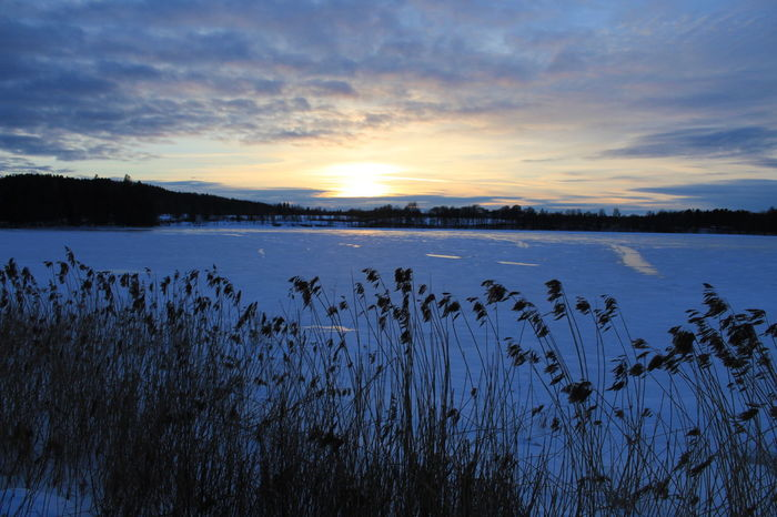 The sun is going down. Where are you then? Canonphotography Canoneos1300D Winter Sea Cold Temperature Sweden Sverige Sweden🇸🇪 Sweden-landscape Beauty In Nature Sunset