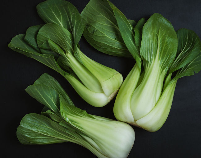 High angle view of vegetables on table against black background