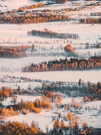 Outdoors Nature No People Aerial View Winter Snow Day Agriculture Water