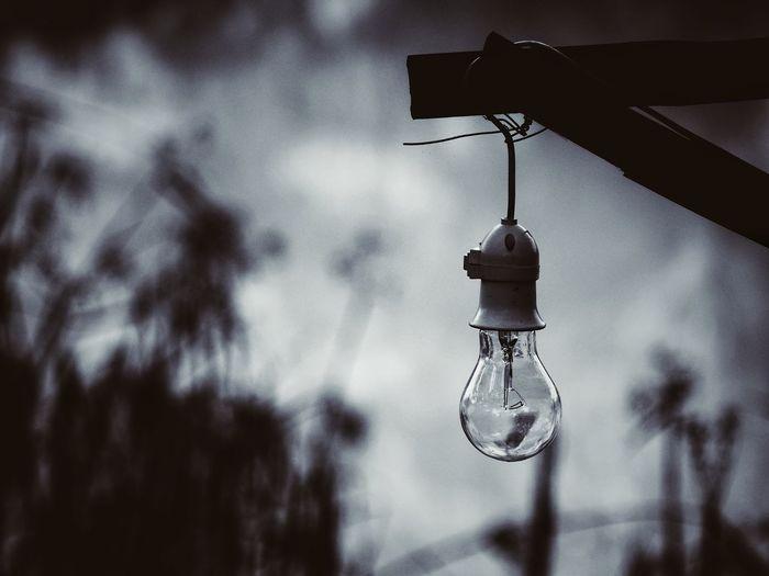 Light bulb Hanging Close-up Light Bulb Electric Bulb Gas Light Bulb Electricity  Energy Efficient Electricity Tower Electricity Pylon Pendant Light Wind Chime Electric Light Darkroom Power Line  Lit Energy Efficient Lightbulb Lighting Equipment Locket Dreamcatcher Filament Chandelier
