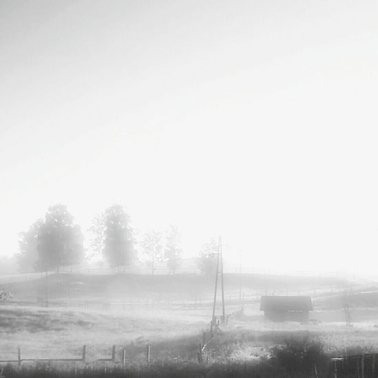 Blackandwhite Blackandwhite Photography Monochrome Monochromatic Bwphotography Bwphoto Eyeemnaturelover Nature_collection Landscape_Collection Landscape_photography