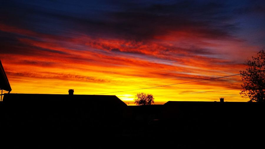 Stepped outside one morning while cooking breakfast for some fresh, crisp morning air. Flashback Sunrise Silhouette Sunrise And Clouds Taking Photos Beautiful View Blessed & Thankful :)
