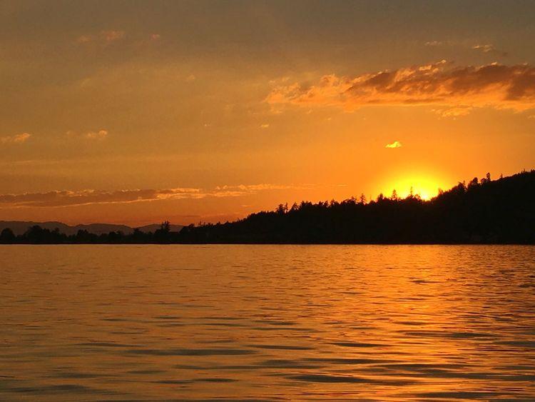 Lake Of Zurich Zürichsee Nature Sun Sunset Sonnenuntergang