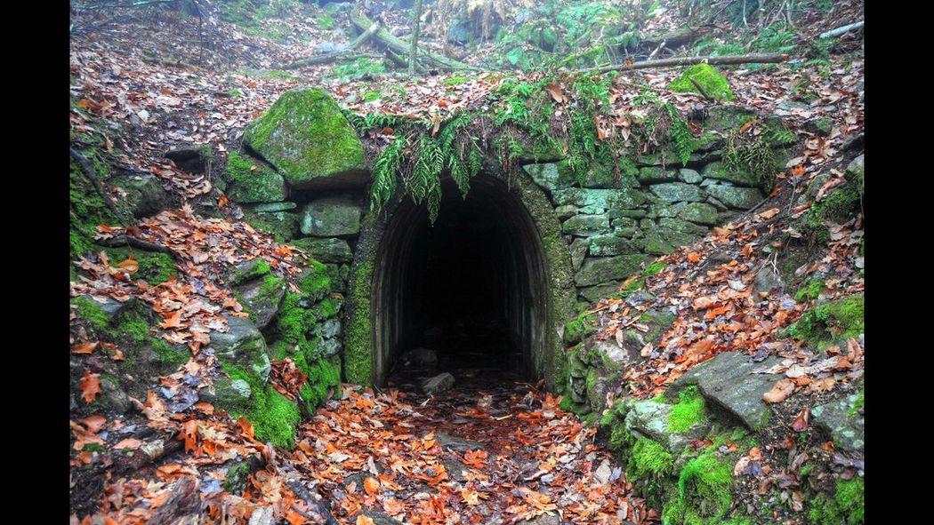Beautiful Nature EyeEm Nature Lover Nature Cave