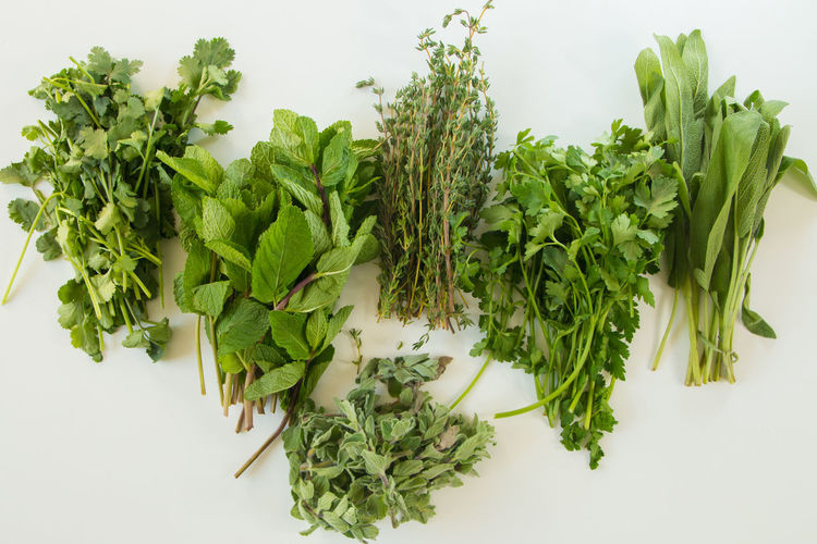 High angle view of chopped plant against white background