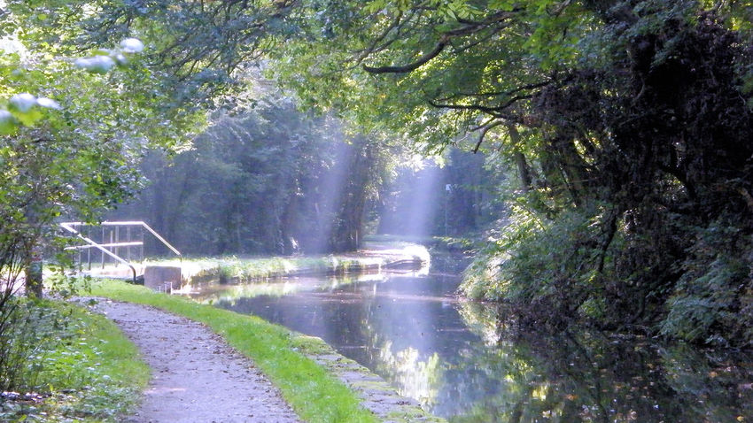 Beauty In Nature Canal Canal Towpath Canals And Waterways Day Froghall Wharf Nature No People Outdoors Rays Of Sunlight Rays Of Sunshine Scenics Sky Sunlight Sunlight Through Trees Tree Water