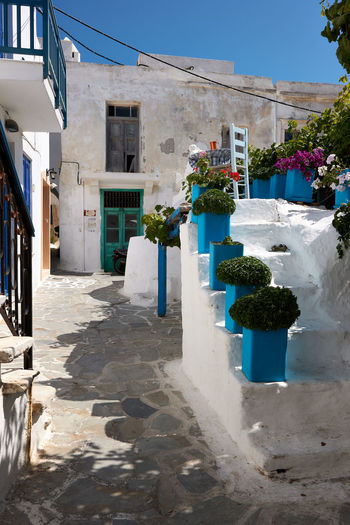 Naxos Town Architecture Blue Building Building Exterior Built Structure City Day Flower Flower Pot Flowering Plant Footpath House Nature No People Outdoors Plant Potted Plant Residential District Shadow Street Sunlight