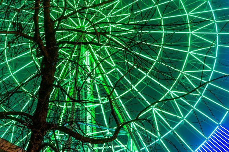 Street Photography Ferris Wheel Night Lights Night Photography Hugging A Tree
