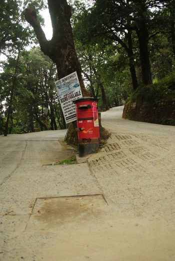 India 2014 : I was trying to find a way to China peak and came across the vintage red pillar box in the middle juction among forest nearby small community that situated on hill. Into The Wild Jungle Travel No People Junction Pathway In The Forest Letter Nature Tree Red Mailbox Mail Postal Worker EyeEmNewHere