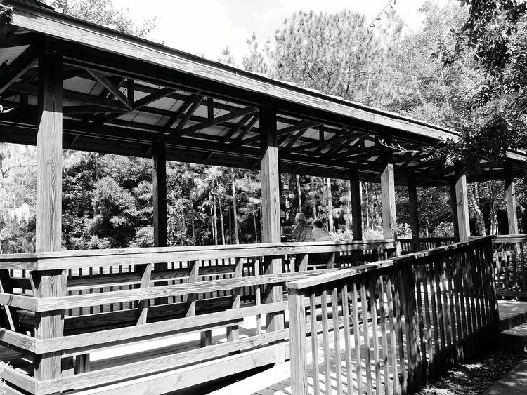 Black And White Photography Architecture_collection Gazebo At The Park EyeEm Best Shots - Black + White Hanging Out Check This Out Taking Photos Relaxing