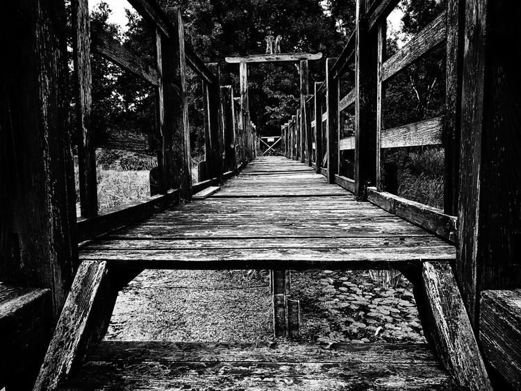 Day No People Shadow Architecture Tree Wooden Bridge Wood - Material Blackandwhite Blackandwhite Photography Exceptional Photographs EyEmNewHere EyeEm EyeEm Selects Eyeemphoto My Unique Style The Great Outdoors - 2017 EyeEm Awards Getting Inspired EyeEm Gallery EyeEm Best Edits EyeEmBestPics Bridge Fence EyeEmBestEdits Capture The Moment EyeEm Nature Lover Nature
