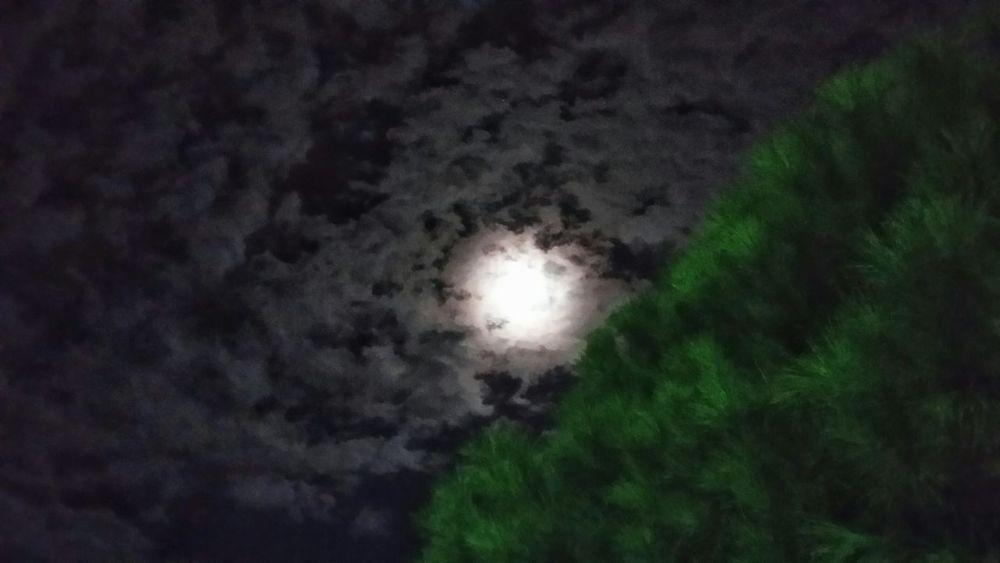 Lo spettacolo della Natura Nightphotography in Urla Turkey Ciao Amici