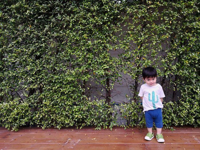 Full length of boy standing against trees