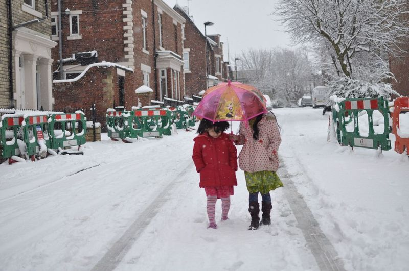 Winter Warm Clothing Two People Cold Temperature Snow Real People Girls Togetherness Childhood Lifestyles Outdoors Bare Tree Shades Of Winter