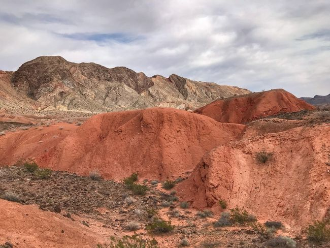 Landscape of bright orange barren hills, desert plants, and barren brown mountains behind Barren Hills Orange Hill Orange Color Sky Geology Landscape Physical Geography Nature Mountain Arid Climate Mountain Range Day Beauty In Nature Desert No People Outdoors Scenics Tranquility