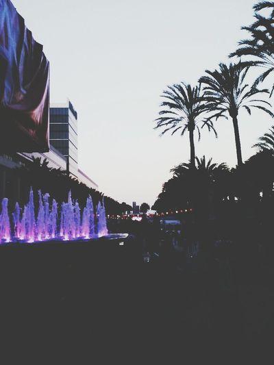 Vidcon 2014 Vidcon Anaheim Convention Center