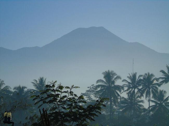Gede Mountain Indonesia Greatview INDONESIA Thebest Gunung Gede Pangrango Beautifulofindonesia Westjava Sukabumi Amazing View Flyingmountain Fog Forest Winter