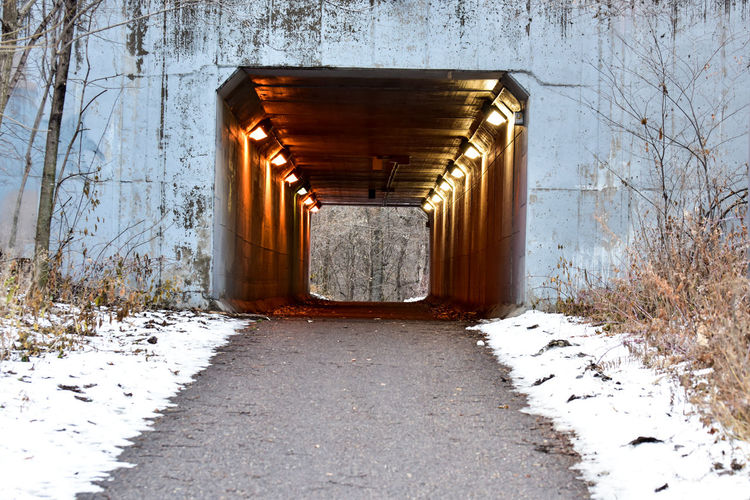 hiking trail tunnel Bradleywarren Photography Bradley Olson Backgrounds Room For Text Copy Space Snow The Way Forward Winter Cold Temperature Direction No People Architecture Day Transportation Nature Covering Built Structure Road Tree Footpath Diminishing Perspective Outdoors Bare Tree Tunnel Long