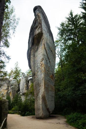 Adršpachské Skály Ancient Civilization Day Low Angle View Nature No People Outdoors Sculpture Sky Statue Travel Destinations Tree