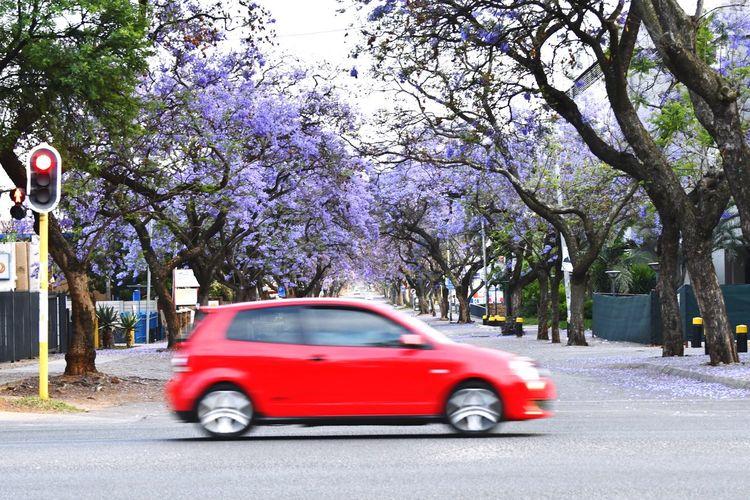 Car on street against sky