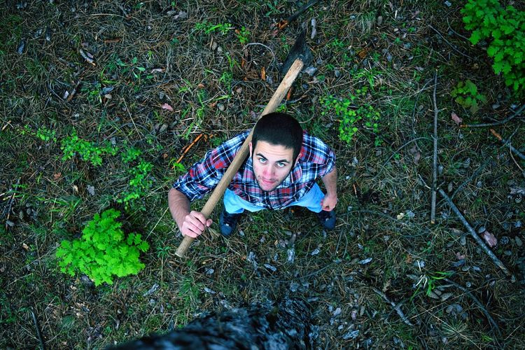 High angle portrait of young man holding axe while standing on field in forest