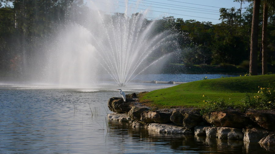 Fountain at hole 18 Beautifully Designed Beauty In Nature Beauty On A Golf Course Florida Golf Course Golf Course Long Exposure Outdoors Tree Water
