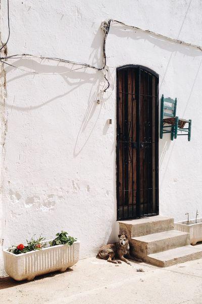 El centinela Landscape Life Streetphotography Al-Andalus