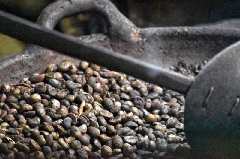 Coffee roasting in Bali Food And Drink Food Freshness No People Abundance Close-up Large Group Of Objects