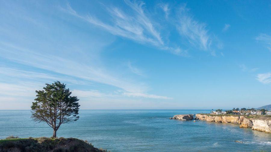 Pismo Beach, CA California Pismo Beach Water Sea Sky Beauty In Nature Beach Scenics - Nature Land Horizon Over Water Tree Tranquil Scene No People Nature