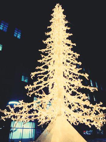 圣诞 Marry Christmas рождество