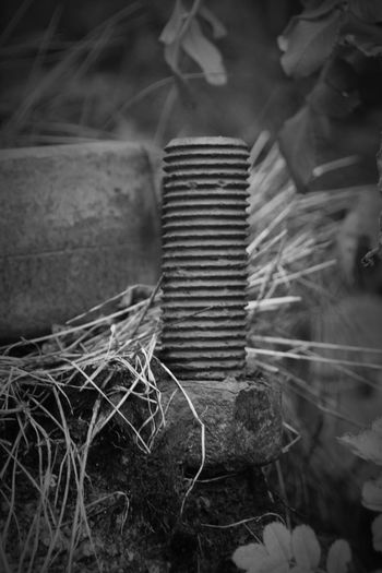 I will stand strong Rusty Rusty Metal Rusty Goodness Bolt Nut Grass Threads Foundation Anchor Point Sweden Blackandwhite Metal Industry Close-up Iron - Metal Blade Of Grass Nut - Fastener Things That Go Together
