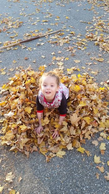 A Bird's Eye View Color Palette Yellow Leaves Yellow Leaves Girl Child Young Child Playing