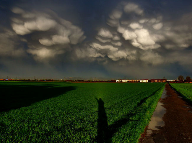 Mammatus und der schwarze Mann Agriculture Beauty In Nature Cloud Cloud - Sky Cloudy Field Grass Green Color Landscape Mammatus Clouds Outdoors Sky Sunset Thunderstorm Weather