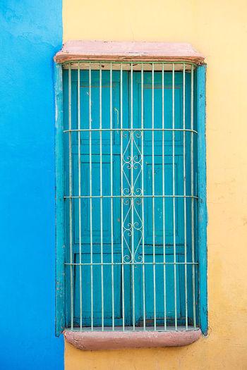 blue window ,