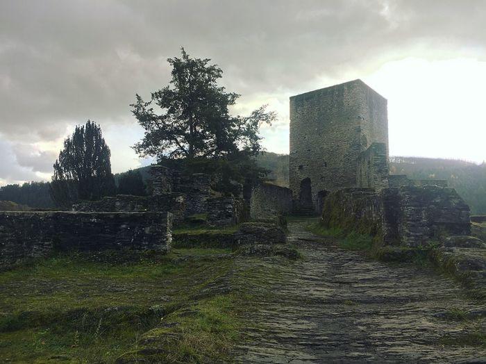 Lux Ancient Mist Castle