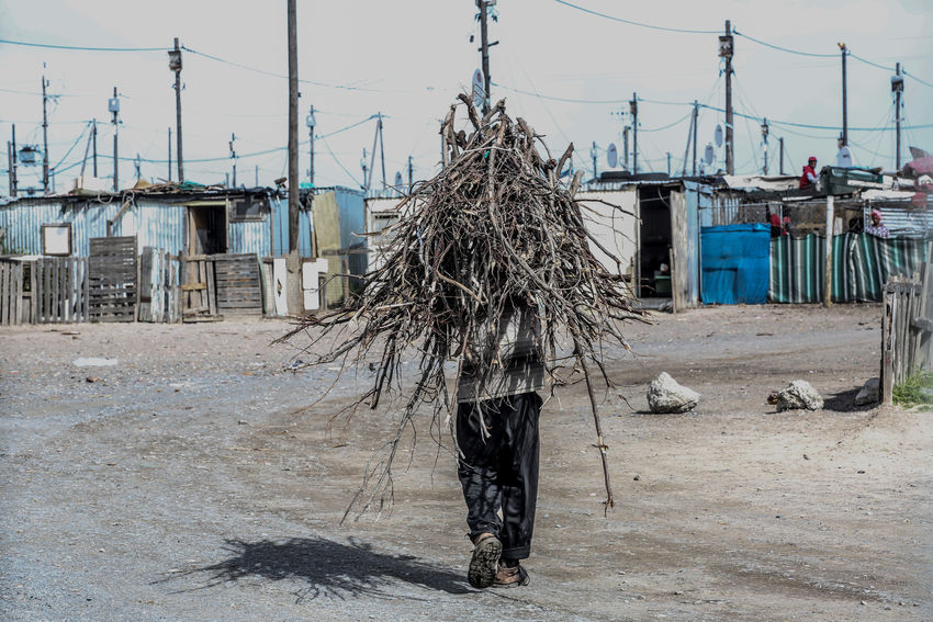 Man carrying firewood on his back while walking home Blikkiesdorp Building Exterior Carrying Firewood Man Outdoors Poverty Township Life Walking