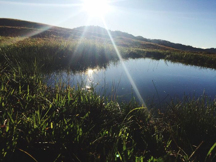 EyeEm Ready   Nature Sunbeam Sunlight Beauty In Nature Grass Tranquil Scene Water Scenics Day No People Outdoors Sky Sun Being With Nature