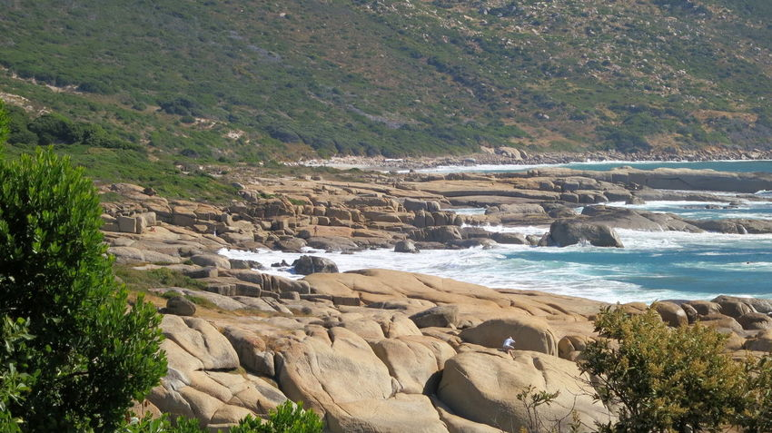 Coastline Beauty In Nature Costal View Day Nature No People Outdoors Rock - Object Scenics Sea Water