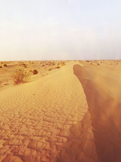 Dessert Dubai Sand Dune EyeEm Selects Land Sky Sand Tranquility Beach Nature Tranquil Scene Scenics - Nature Day Beauty In Nature Landscape No People Desert Climate Environment Non-urban Scene Remote Outdoors Clear Sky