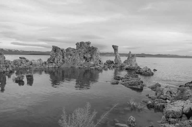 Black and white landscape of tufa formations in Mono Lake Mono Lake Tufa Black And White EyeEm Selects Sky Water Cloud - Sky Plant Nature Day No People Outdoors Growth Sea Non-urban Scene Scenics - Nature Waterfront Tranquility Tranquil Scene Beauty In Nature Reflection