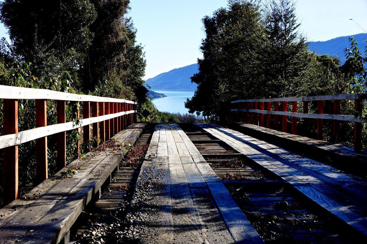 rail transportation, railroad track, tree, transportation, railway track, day, the way forward, no people, outdoors, sky, sunlight, nature