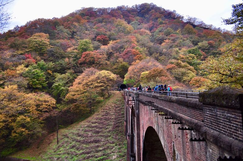 Arch Architecture Autumn Beauty In Nature Bridge Bridge - Man Made Structure Built Structure Connection Day Footbridge Mountain Nature Outdoors Real People Scenics Sky Transportation Tree めがね橋 碓氷第三橋梁 Low Angle View in Japan