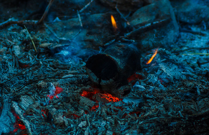 Nature Outdoors Camping Fire